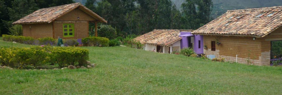 <span style='color:#b5914f'>Venta casa P. Fereira</span> - COP$650.000.000
