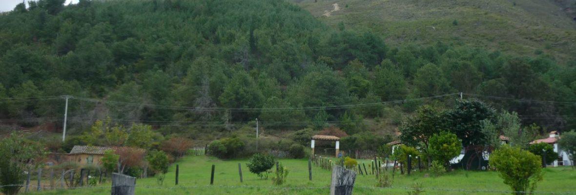 <span style='color:#b5914f'>Venta lote la Castellana</span> - COP$490.000.000
