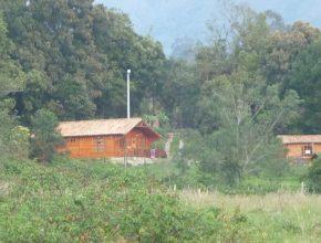 <span style='color:#b5914f'>casa lote Cardonal madera</span> - COP$400.000.000